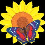 Flores para eventos barranquilla