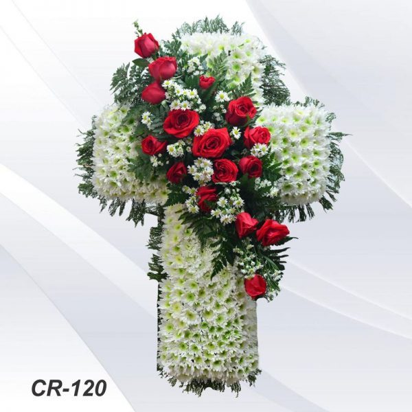 Cr 120