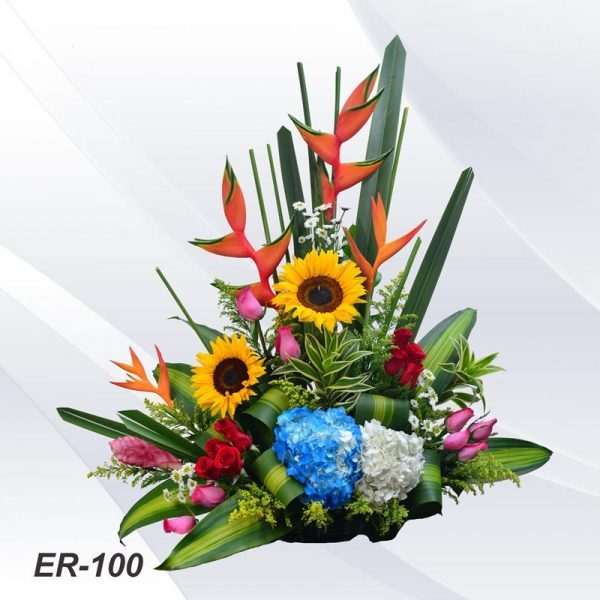 ER-100