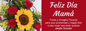 Floristería en Barranquilla - Día-de-las-madres-2019