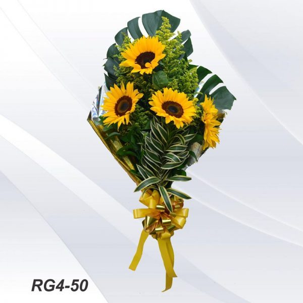 RG4-50