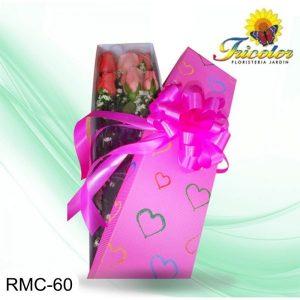 RMC-60