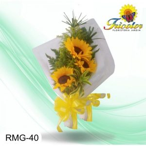 RMG-40